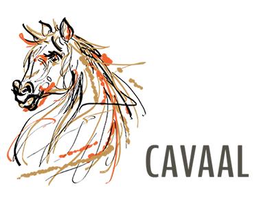 Création d'une boutique en ligne pour Cavaal