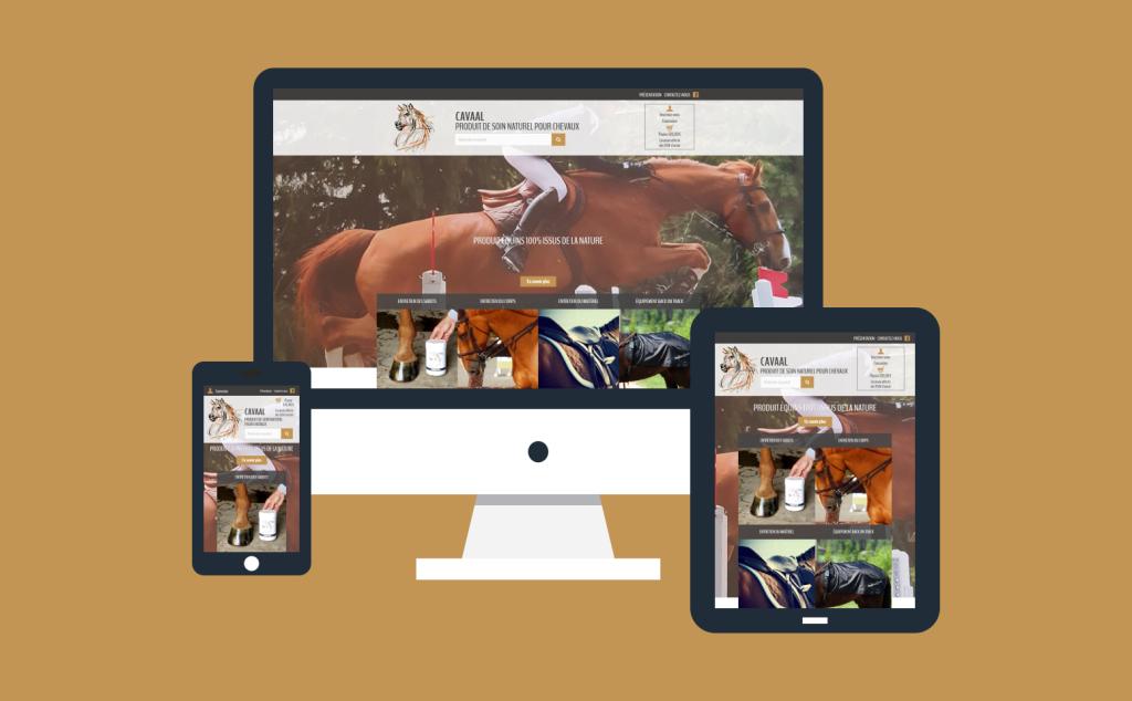 Création d'une boutique en ligne responsive pour Cavaal