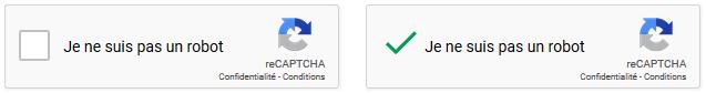 Solution reCaptha de Google sur le nouveau site internet d'Eure-et-Loir Nature