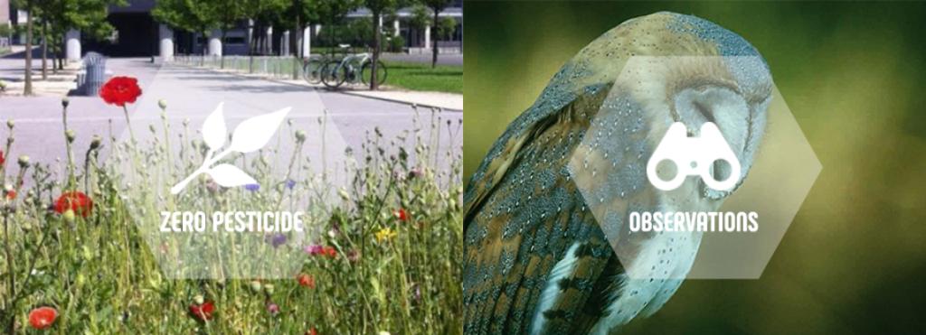 Rubriques mises en avant sur le nouveau site internet d'Eure-et-Loir Nature