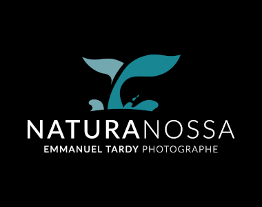 Nouvelle refonte du site internet NaturaNossa du photographe animalier Emmanuel Tardy