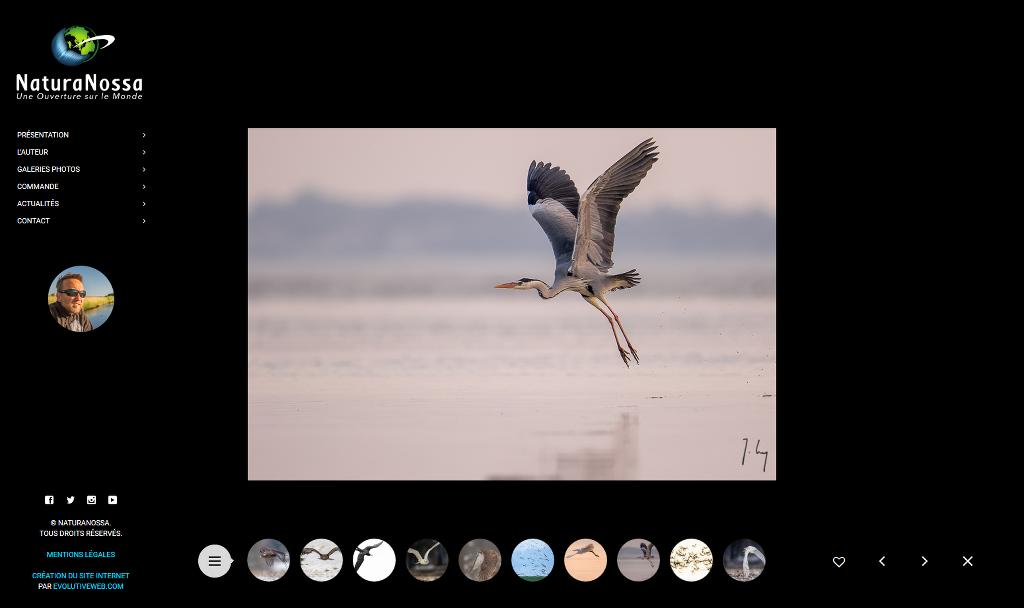 Visionnage d'une galerie photo sur le site de NaturaNossa