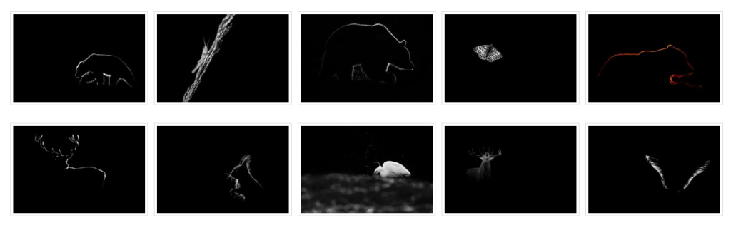 Galeries photos thématiques sur le nouveau site internet du photographe Emmanuel Tardy