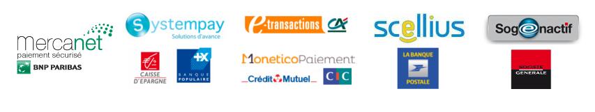 Système de paiement en ligne des banques