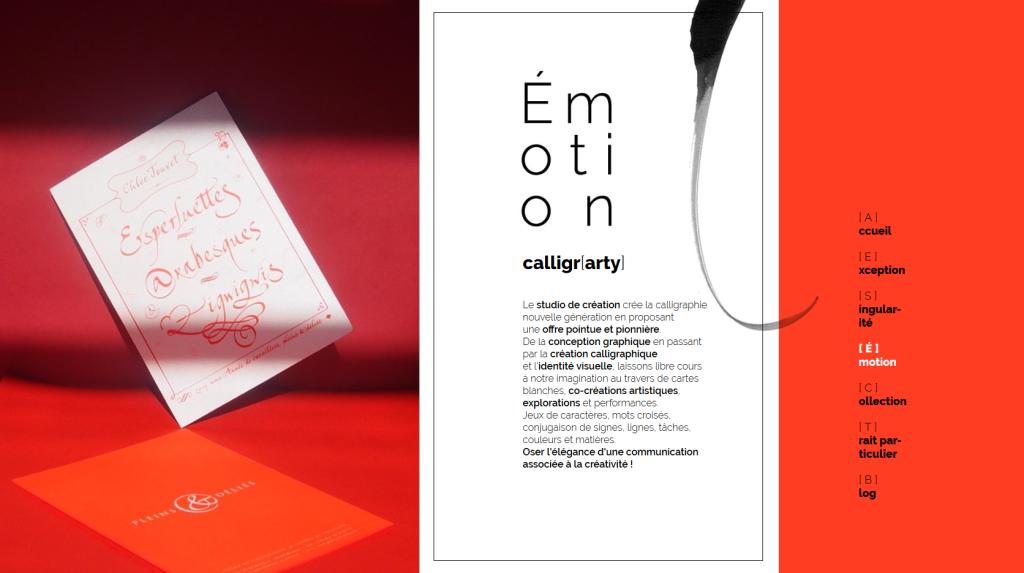 Page d'émotion du nouveau site internet de Pleins & Déliés