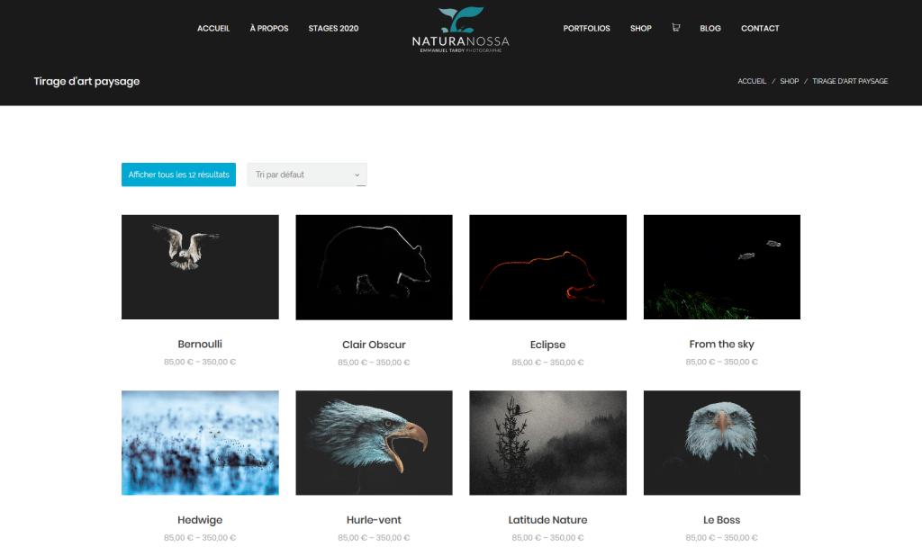 Partie boutique en ligne sur le nouveau site internet du photographe Emmanuel Tardy
